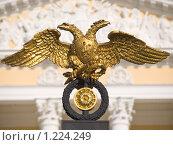 Купить «Двуглавый орел», фото № 1224249, снято 7 марта 2009 г. (c) Александр Кузовлев / Фотобанк Лори