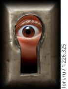 Купить «Глаз в замочной скважине», фото № 1226325, снято 15 ноября 2009 г. (c) Михаил Коханчиков / Фотобанк Лори