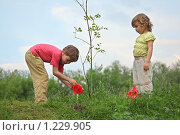 Купить «Дети сажают дерево», фото № 1229905, снято 11 июня 2009 г. (c) Losevsky Pavel / Фотобанк Лори