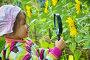 Девочка рассматривает через лупу цветок, фото № 1230113, снято 6 августа 2009 г. (c) Losevsky Pavel / Фотобанк Лори