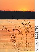 Купить «Закат на озере», фото № 1232793, снято 28 июня 2009 г. (c) Валуйкин Сергей / Фотобанк Лори