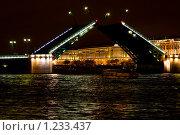 Купить «Дворцовый мост в Санкт-Петербурге ночью», фото № 1233437, снято 24 мая 2009 г. (c) Оксана Кацен / Фотобанк Лори
