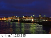 Купить «Дворцовый мост», фото № 1233885, снято 22 ноября 2009 г. (c) Михаил Фёдоров / Фотобанк Лори