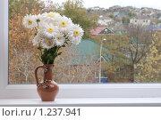 Купить «Букет осени на окне осенний город», фото № 1237941, снято 20 ноября 2009 г. (c) Королевский Василий Федорович / Фотобанк Лори