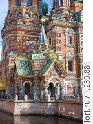 Собор Спас-на-Крови, Петербург (2009 год). Стоковое фото, фотограф Алексей Артамонов / Фотобанк Лори