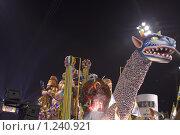 КАРНАВАЛ БРАЗИЛИЯ (2008 год). Редакционное фото, фотограф Оксана Sk / Фотобанк Лори