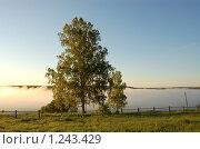 Купить «Туман на рассвете», фото № 1243429, снято 31 мая 2009 г. (c) Елена Ильина / Фотобанк Лори