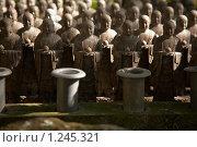 Купить «Каменные статуи монахов», фото № 1245321, снято 14 ноября 2007 г. (c) Serg Zastavkin / Фотобанк Лори
