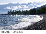 Купить «Природа северного Байкала», фото № 1245337, снято 16 августа 2009 г. (c) Татьяна Добровольская / Фотобанк Лори