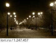 Аллея. Улан-Удэ, район Саяны. Ночная съемка. Сепия. (2009 год). Стоковое фото, фотограф Александр Подшивалов / Фотобанк Лори