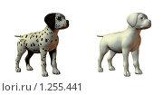 Купить «Собака далматин», иллюстрация № 1255441 (c) Alperium / Фотобанк Лори