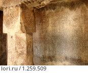 Южноиндийский язык на камне (2008 год). Стоковое фото, фотограф Павлов Борис / Фотобанк Лори