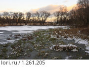 Купить «Усадьба Разумовских. Замёрзший пруд.  Балашиха.», эксклюзивное фото № 1261205, снято 1 ноября 2009 г. (c) Дмитрий Неумоин / Фотобанк Лори