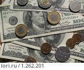 Купить «Валюта разных стран», фото № 1262201, снято 29 сентября 2009 г. (c) Елена Носик / Фотобанк Лори