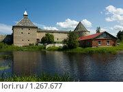 Старая Ладога. Вид на крепость со стороны реки Ладожки (2009 год). Редакционное фото, фотограф Литвяк Игорь / Фотобанк Лори