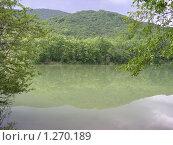 Горное озеро в зелени. Стоковое фото, фотограф Александр Лавренюк / Фотобанк Лори