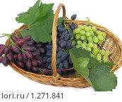 Купить «Плетеная корзинка с гроздьями винограда», фото № 1271841, снято 15 августа 2009 г. (c) Ольга Молчанова / Фотобанк Лори
