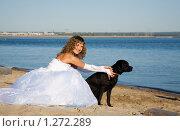 Купить «Невеста с черным псом на берегу реки», фото № 1272289, снято 25 августа 2007 г. (c) Коваль Василий / Фотобанк Лори