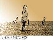 Силуэты трех виндсерфингистов на волнах. Стоковое фото, фотограф Сергей Сухоруков / Фотобанк Лори