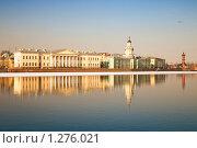 Купить «Нева. Санкт-Петербург», эксклюзивное фото № 1276021, снято 15 марта 2009 г. (c) Александр Алексеев / Фотобанк Лори