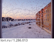 Вид на улицу сквозь морозное стекло. Стоковое фото, фотограф Вера Попова / Фотобанк Лори