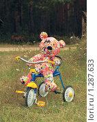 Медведь на велосипеде (2008 год). Редакционное фото, фотограф Кирюшина Евгения / Фотобанк Лори