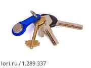 Купить «Связка ключей», фото № 1289337, снято 11 ноября 2009 г. (c) Черников Роман / Фотобанк Лори