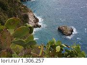Купить «Скалистый берег острова Капри», фото № 1306257, снято 4 октября 2008 г. (c) Андрей Емельяненко / Фотобанк Лори