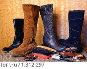 Купить «Чистим обувь», фото № 1312297, снято 12 ноября 2008 г. (c) Павлова Татьяна / Фотобанк Лори
