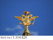 Купить «Двуглавый орел на башне Воскресенских (Иверских) ворот Китай-города», эксклюзивное фото № 1314829, снято 31 мая 2009 г. (c) Алёшина Оксана / Фотобанк Лори