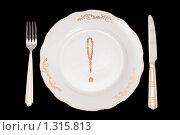 Купить «Концептуальная идея о диете», фото № 1315813, снято 9 декабря 2009 г. (c) Черников Роман / Фотобанк Лори