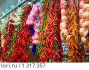 Купить «Связки чеснока и перца», фото № 1317357, снято 8 мая 2008 г. (c) Федор Кондратенко / Фотобанк Лори