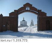 Свято-Димитриевский монастырь (2009 год). Редакционное фото, фотограф Валентин Тучин / Фотобанк Лори
