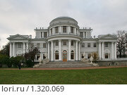 Купить «Елагин дворец», фото № 1320069, снято 29 октября 2009 г. (c) Александр Секретарев / Фотобанк Лори