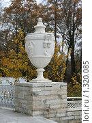 Купить «Декоративная ваза на парадной лестнице Елагина дворца. Поздняя осень», фото № 1320085, снято 29 октября 2009 г. (c) Александр Секретарев / Фотобанк Лори