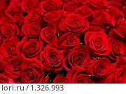 Купить «Огромный букет алых роз», фото № 1326993, снято 24 декабря 2009 г. (c) Александр Подшивалов / Фотобанк Лори