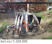 Купить «Байкальский омуль на рожне», фото № 1329505, снято 26 июля 2009 г. (c) Игорь Кротов / Фотобанк Лори