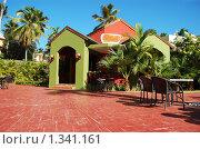 Купить «Старинное здание, стоящее в пальмовых зарослях», фото № 1341161, снято 15 декабря 2009 г. (c) Мария Смирнова / Фотобанк Лори