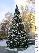 Купить «Городская новогодняя ёлка, Москва», фото № 1344477, снято 3 января 2010 г. (c) Наталия Шевченко / Фотобанк Лори