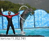 Купить «Шоу дельфинов, Ялта», фото № 1352741, снято 10 сентября 2009 г. (c) ИВА Афонская / Фотобанк Лори