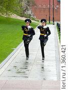 Купить «Смена почетного караула», фото № 1360421, снято 8 мая 2009 г. (c) Matwey / Фотобанк Лори
