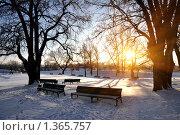 Одинокие скамейки на закате. Стоковое фото, фотограф Анфимов Леонид / Фотобанк Лори