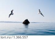 Купить «Байкал. Остров Ижимей», фото № 1366557, снято 12 сентября 2008 г. (c) Andrey M / Фотобанк Лори
