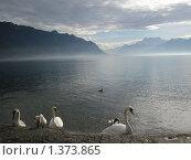Женевское озеро. Стоковое фото, фотограф Виктор Пивоваров / Фотобанк Лори