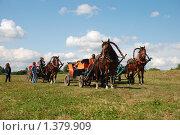 Купить «Боголюбово, лошадки», эксклюзивное фото № 1379909, снято 8 августа 2009 г. (c) lana1501 / Фотобанк Лори