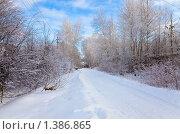 Заснеженная загородная дорога на дачу. Стоковое фото, фотограф Наталья Громова / Фотобанк Лори