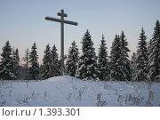 Православный крест в поле на фоне зимнего леса (2010 год). Стоковое фото, фотограф Владимир Гарникян / Фотобанк Лори