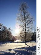 Купить «Павловск», фото № 1399697, снято 18 января 2010 г. (c) Андрей Григорьев / Фотобанк Лори
