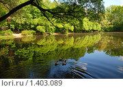 Купить «Москва. Суворовский парк в Кунцеве», эксклюзивное фото № 1403089, снято 19 мая 2009 г. (c) lana1501 / Фотобанк Лори