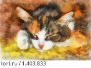 Иллюстрация, спящая кошка. Стоковая иллюстрация, иллюстратор Наталия Скоморохова / Фотобанк Лори